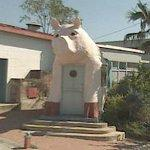 Giant Pig (StreetView)