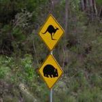 Kangaroo and Wombat Crossing (StreetView)