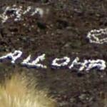 """Graffiti"" in Volcanic Rock"