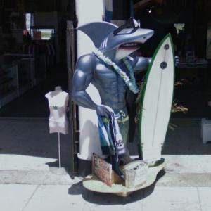 Sharkman (StreetView)