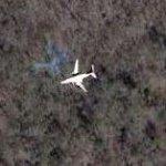 Small jet in flight (Google Maps)