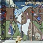 'Cashus King of the Pit Bulls' by Risk, Revok, and Abel (StreetView)