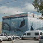 Wyland Whale Mural - 'Florida's Living Reef' (StreetView)