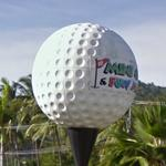 Giant golf ball