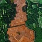 Amber Fields of Peat