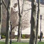 Brooklyn War Memorial (StreetView)