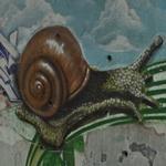 Slug Graffiti (StreetView)