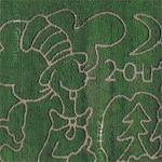 The Cat in the Hat corn maze (Google Maps)