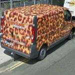 Leopard Van (StreetView)