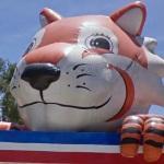 Giant Tiger (StreetView)