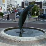 Dolphin (StreetView)