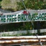Free Bird Massage!