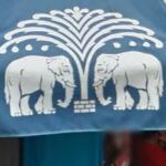 Elephants (StreetView)