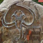 Elephant Odyssey (StreetView)