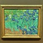 'Irises' by Vincent van Gogh (StreetView)