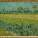 'Field with Flowers near Arles' by Vincent van Gogh (StreetView)
