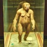 Female Australopithecus (StreetView)