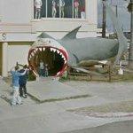 Giant shark eating some kids