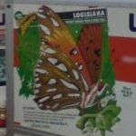 U-Haul #121 - Louisiana