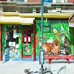 Whiskers Holistic Pet Care (StreetView)