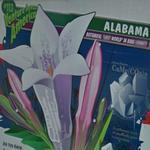 U-Haul #113 - Alabama