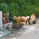 Tiger Sculptures