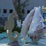 The Seahorse and The Shell (StreetView)