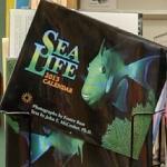 Sea Life 2013 Calendar (StreetView)