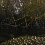 Tandem bike in roundabout (StreetView)