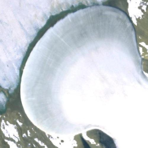 Elephant Foot Glacier (Google Maps)