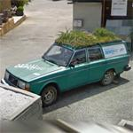 Car with a grassy roof (StreetView)