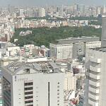 View from Shinjuku Sumitomo Building (StreetView)