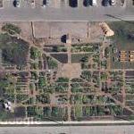 Racine Community Garden (Google Maps)