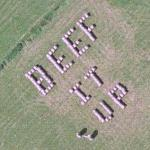 Beef It Up (Google Maps)