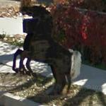 Horse Mailbox (StreetView)