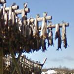 Stockfish Drying Racks (StreetView)