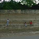 Fossil hunting or Killing weeds? (StreetView)
