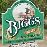 Welcome to Biggs