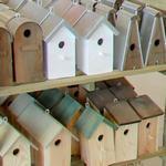 Bird houses (StreetView)