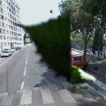 Leaf on the camera (StreetView)