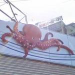 Octopus (StreetView)
