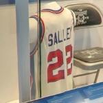 John Salley Jersey (StreetView)