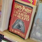 Harry Potter Book (StreetView)
