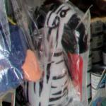 Zebra (StreetView)
