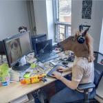 Horsing around at Work (StreetView)