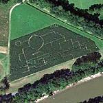 Hicks Corn Maze (Google Maps)