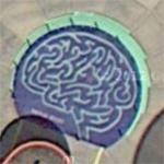 Brain maze (Google Maps)