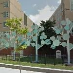 'Trees' by Robert Venturi (StreetView)