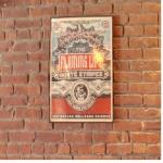 Concert Poster (StreetView)
