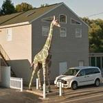 Pink and Green Giraffe